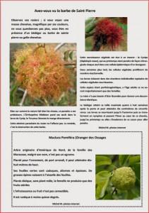 JOURNAL LA VALERIANE PAGE 10