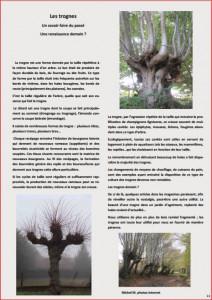 JOURNAL LA VALERIANE PAGE 11