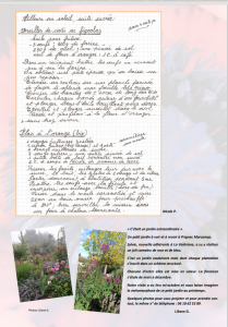 PAGE 10 JOURNAL